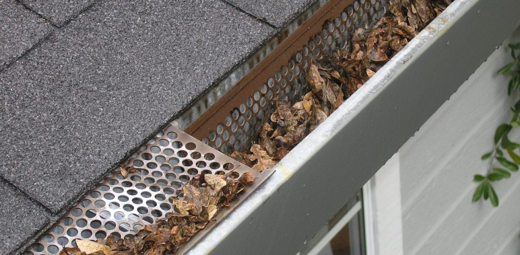 leaves clogging up gutters on house